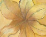 "Yellow Lily, 30"" x 24"""